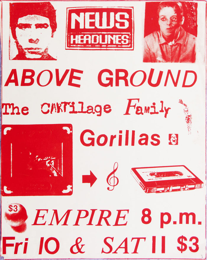 Admin_thumb_p1030534_above_ground_cartilage_gorillas_1983_1600