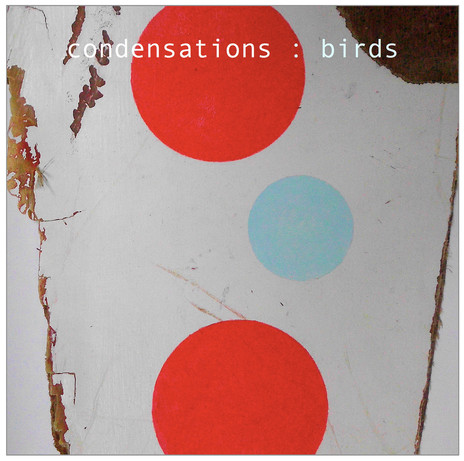 Hero thumb condensations   birds cover